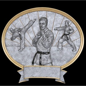 Karate Large Pewter Resin Plaque Trophy - Male