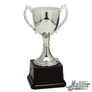 Executive Silver Metal Cup Trophy