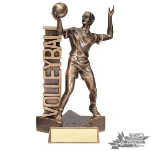 Volleyball Small Billboard Trophy - Male