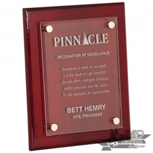 Piano Finish Floating Acrylic Plaque